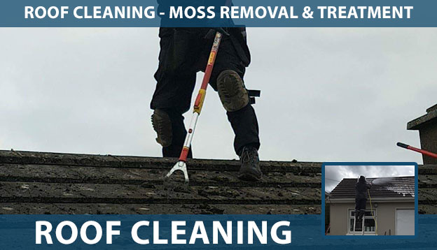 Roof Cleaning including moss removal and treatment in Limerick, North Tipperary and North Cork. Call us on (085) 218 5653