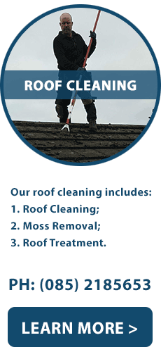 Roof Cleaner in Limerick | Moss Removal and Treatment of Roofs in Limerick